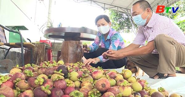 Về Thuận An – Mùa trái chín