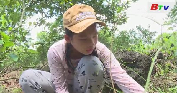 Thắp sáng ước mơ xanh - Em Nguyễn Thị Mộng Thu, lớp 7A3, trường THCS Núi Tượng, huyện Tân Phú, Đồng Nai.