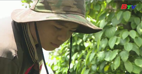 Thắp sáng ước mơ xanh - Em Trần Văn Đại, lớp 10A1, Trường THPT Phạm Văn Đồng, huyện Đắk R'Lấp, tỉnh Đắk Nông