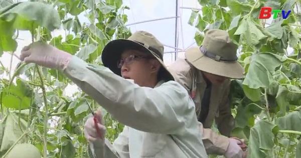 Bình Dương nâng cao hiệu quả hoạt động quỹ hỗ trợ nông dân