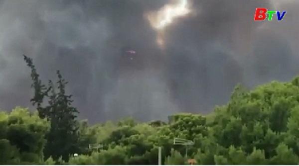 Số người thiệt mạng tiếp tục tăng do cháy rừng ở Hy Lạp