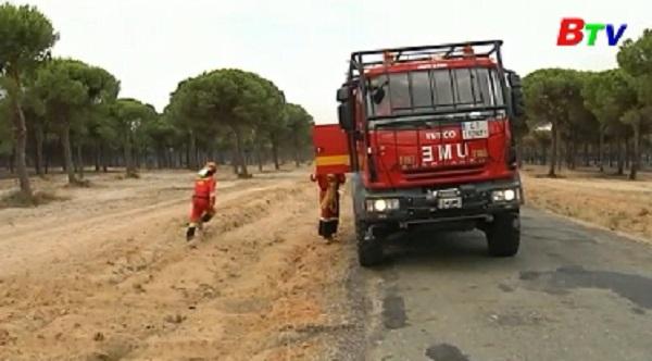 Cháy lớn tại khu bảo tồn tự nhiên của Tây Ban Nha