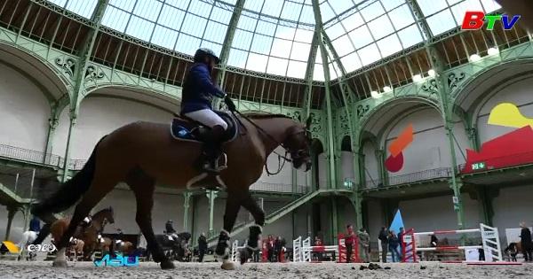Pháp - Cuộc thi nghệ thuật cưỡi ngựa biểu diễn