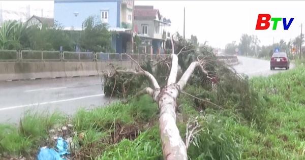 Tiếp tục triển khai các phương án ứng phó trong và sau bão số 9