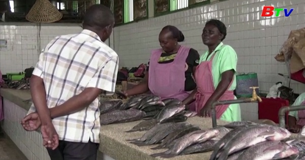 Kenya - Cơ hội kinh doanh cho ngư dân