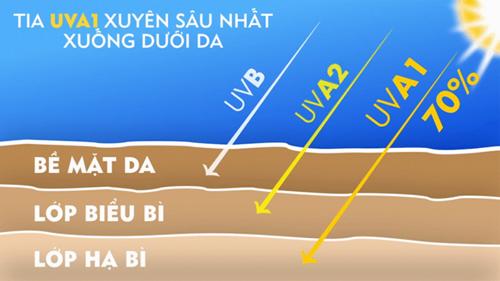 Hạn chế ảnh ưởng của tia UV