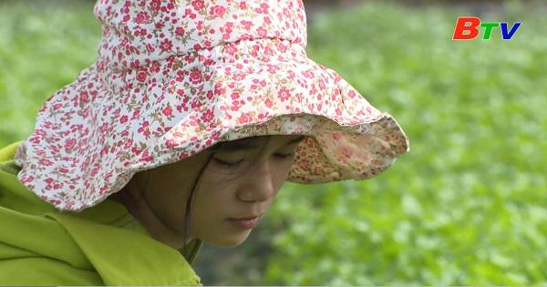 Thắp sáng ước mơ xanh - Em Nguyễn Trâm Anh, lớp 11A12, trường THPT Đức Trọng, huyện Đức Trọng, Lâm Đồng