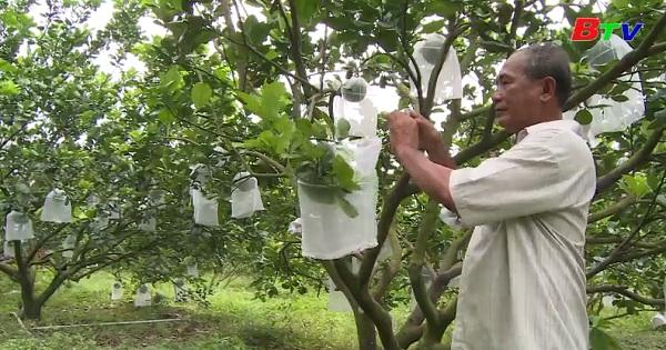 Nông nghiệp hướng công nghệ cao ở Bình Dương