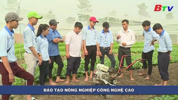 Đào tạo nông nghiệp công nghệ cao